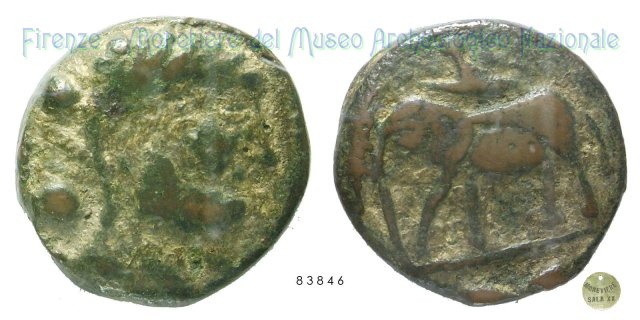 Serie Testa di Eracle - Elefante 216-213BC (Incerta Centro Italia)