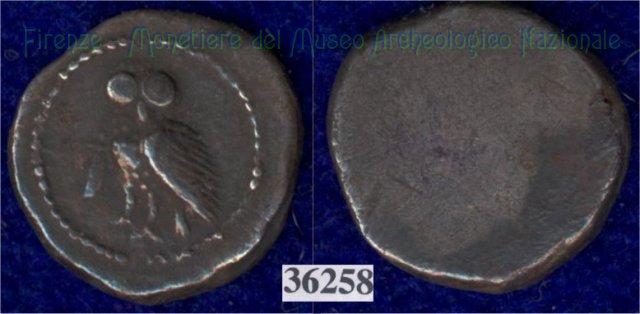Civetta / senza tipo (HN Italy 225)