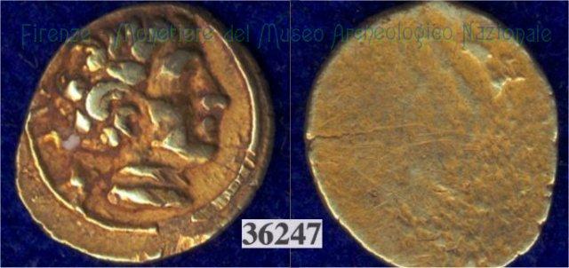Testa maschile / senza tipo (HN Italy 132) 400BC (Pupluna)