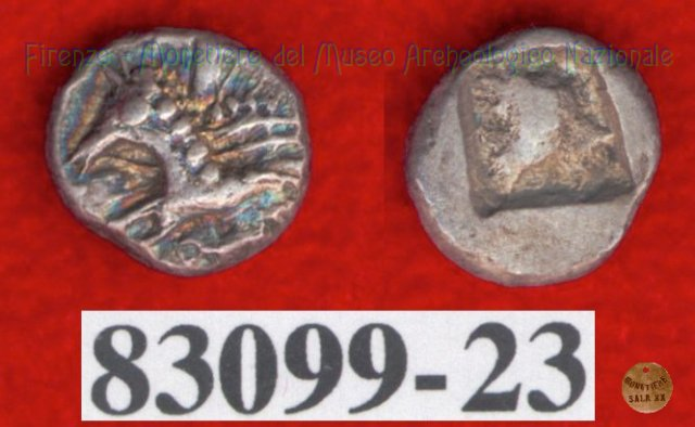 Hippalektryon a s./Quadrato inc. (HN Italy, 92-93) 500-450BC (Pupluna?)